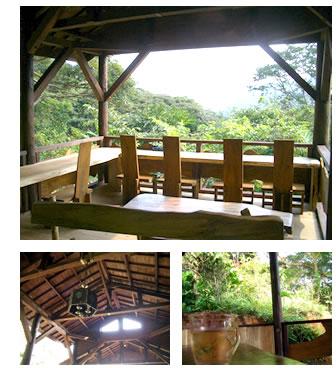 写真:沖縄県本部町の茶屋 どんぐり