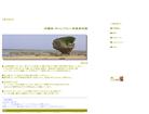 沖縄流・チャンプルー写真素材館